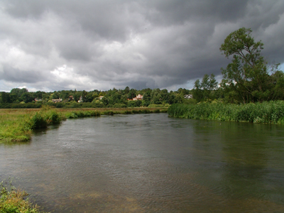 The River Avon at Ringwood